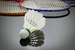 Badmintonuppsättning Arkivfoto