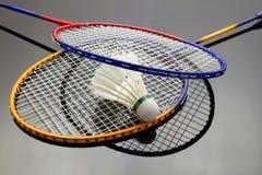 Badmintonuppsättning Arkivbild