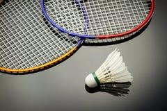 Badmintonuppsättning Fotografering för Bildbyråer
