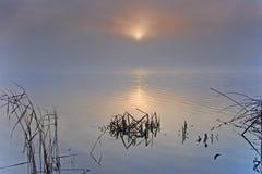 Badsee i Allgaeuen Arkivfoto