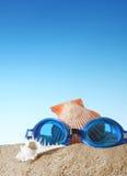 Badskyddsglasögon med snäckskalet Fotografering för Bildbyråer