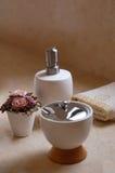 badtillförsel Royaltyfri Foto