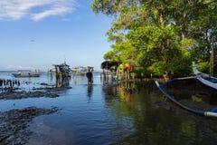 BADUNG/BALI-MAY 10 2019: En man stod i mitt av en mangroveskog vars havsvatten gick tillbaka Framme av honom ?r a royaltyfria bilder
