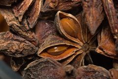 Star anise close-up. Badyan close-up on a wooden Board close-up photo royalty free stock photo
