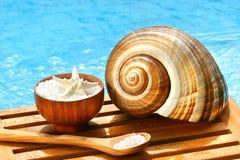 Badzout en overzeese shell stock afbeelding