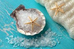 Badzout in shell en zeesterren Royalty-vrije Stock Foto's
