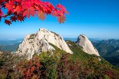 Baegundae峰顶和Bukhansan山在秋天 库存图片