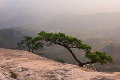 Baegundae峰顶,在Bukhansan山的秋天季节日出  图库摄影