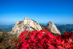 Baegundae peak and Bukhansan mountains in autumn. Royalty Free Stock Image