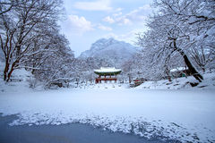 Baekyangsa Temple and falling snow, Naejangsan Mountain in winter with snow. Royalty Free Stock Photos