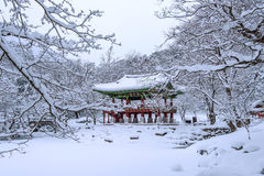 Baekyangsa Temple and falling snow, Naejangsan Mountain in winter with snow. Stock Photography