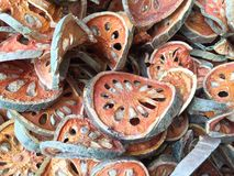 Bael ή ξύλινες φέτες μήλων Στοκ εικόνα με δικαίωμα ελεύθερης χρήσης