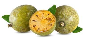 Bael-Frucht- oder hölzerne Apfelfrucht Aegle-marmelos auf einem Weiß Stockbilder