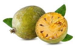 Bael-Frucht- oder hölzerneapfelfrucht Lizenzfreie Stockbilder