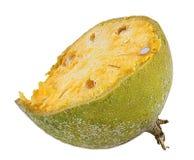 Bael-Frucht- oder hölzerneapfelfrucht Lizenzfreie Stockfotos
