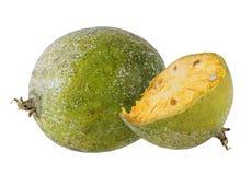 Bael-Frucht- oder hölzerneapfelfrucht Lizenzfreies Stockbild