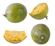 Bael-Frucht- oder hölzerneapfelfrucht Stockbild