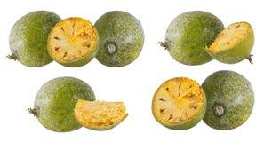 Bael-Frucht- oder hölzerneapfelfrucht Stockfotos