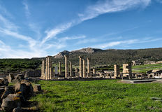 Baelo Clauida Roman Ruins. Tarifa, Cadiz, Spain Royalty Free Stock Images
