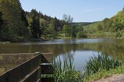 The Baerenfichtenweiher between Niederreifenberg and Schmitten in the Taunus, Germany Royalty Free Stock Image