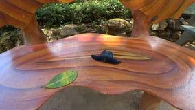 baeutiful πεταλούδα Στοκ φωτογραφία με δικαίωμα ελεύθερης χρήσης