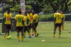 Bafana Bafana övar Arkivfoto