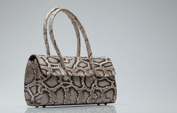 Bag. Close up view of nice small snake skin ladie's bag on grey back stock photography