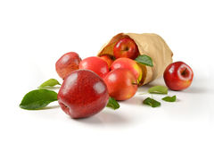 Bag of apples Royalty Free Stock Image