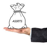 Bag with asset Royalty Free Stock Photo