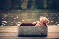 bag bear teddy 库存图片