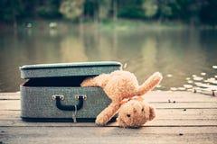 bag bear teddy 免版税库存照片