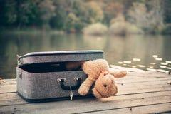 bag bear teddy стоковое фото