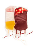 Bag of blood and plasma isolated Royalty Free Stock Image