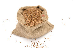 Bag of buckwheat. Royalty Free Stock Photography