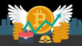 A bag,cap and many bitcoins.