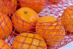 Bag of Clementines Stock Photo