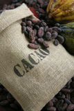 Bag of cocoa beans Royalty Free Stock Image
