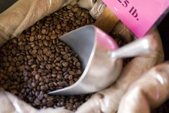 Bag of coffee beans with metal scoop Royalty Free Stock Photo
