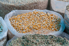 Bag of corn kernels. Full bag of maize kernels on market in Peru, South America Royalty Free Stock Images