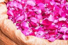 Bag of edible rose petals. Large bag with fresh pink edible rose petals Stock Image