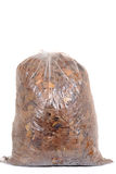 Bag of fall leaves for recycling Royalty Free Stock Image