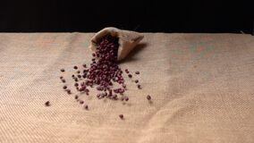 Bag filled with red beans falling on a floor covered with sackcloth.
