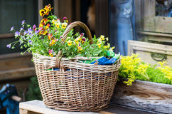 The bag with flowers Royalty Free Stock Image