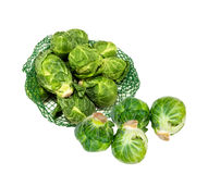 Bag of fresh Brussels sprout Stock Photography