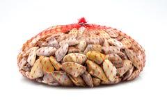 Bag of fresh clams Stock Image