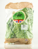 Bag of Fresh Greens from Redmere Farms for Tesco. WREXHAM, UK - MAY 24, 2017: Bag of Redmere Farms Fresh Greens exclusively for Tesco supermarket. On a white Royalty Free Stock Photos