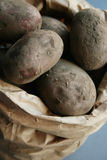 Bag of fresh potatos. Fresh earthy and organic potatos in a brown paper bag Stock Photography