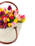 Bag  of fresh  tulips flowers close up Royalty Free Stock Image