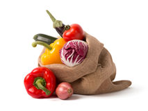 Bag of fresh vegetables Royalty Free Stock Photos