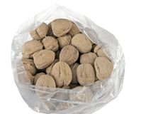 Bag full with fresh Walnuts royalty free stock photos